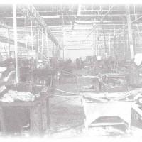 Lavorazione Elastici in Gomma