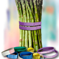 elastici stampati-printed rubber bands